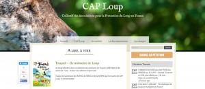 toupoil-RP-caploup